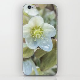 Spring Beauty iPhone Skin
