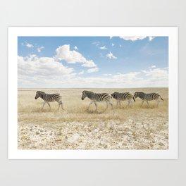Zebra on African Savannah Art Print