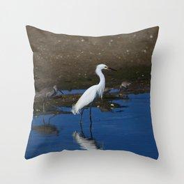 Along the Seaside Throw Pillow