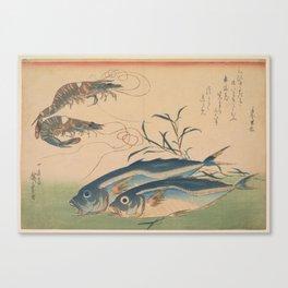 Horse Mackerel with Shrimp or Prawn Canvas Print