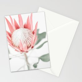 King Protea III Stationery Cards