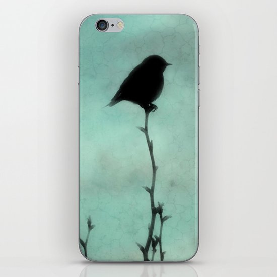 On Top of the World iPhone & iPod Skin