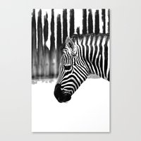 zebra Canvas Prints featuring Zebra by Regan's World