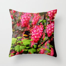 Bumble Bee and Blood Currant Ribes Sanguineum std Throw Pillow