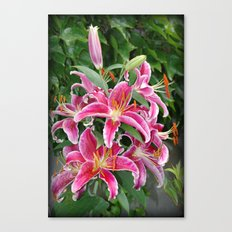 Star Lilies Canvas Print