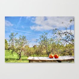 The Apple Orchard Canvas Print