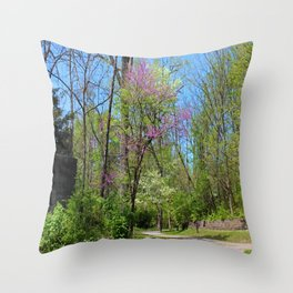 Breakng the Crazy Winter Throw Pillow