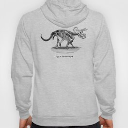 Figure Two: Triceratops Hoody