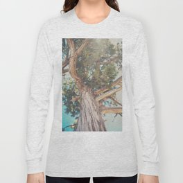 looking up through the leaves of the Juniper Tree ... Long Sleeve T-shirt