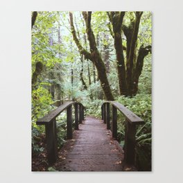 Trail to Toketee Falls Canvas Print