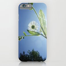 Perspective Slim Case iPhone 6s