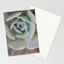 succulent ... Stationery Cards