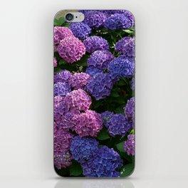 Ombre Hydrangea iPhone Skin