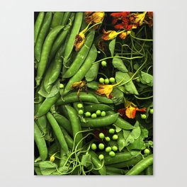 Nasturtiums and Peas Canvas Print