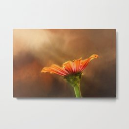 Flower of Fall Metal Print