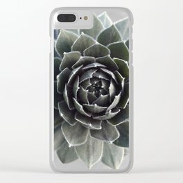Succulent Photography Nature Plant Green Cactus Floral Art Clear iPhone Case