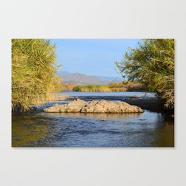 Salt River Arizona Canvas Print