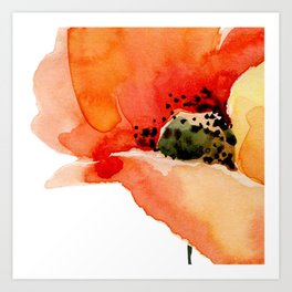 Poppy Kunstdrucke