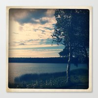 birch Canvas Prints featuring BIRCH by DanaMonstah