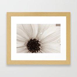 Flower with droplets Framed Art Print