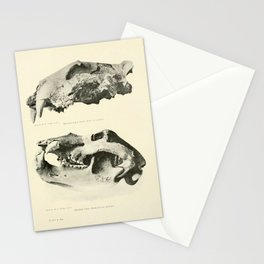 Savor Stationery Cards