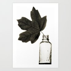 Leaf and Bottle Art Print