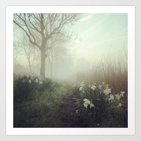 Daffodils in the mist Art Print