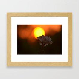 Bushfire Sunrise Framed Art Print