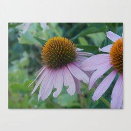 Favorite Flowers Canvas Print