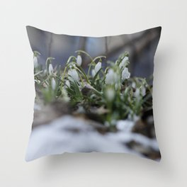snow drop flowers - a sign of spring Throw Pillow