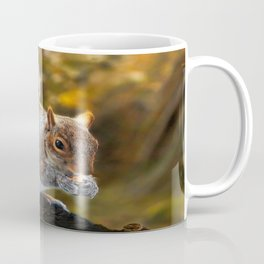 Squirrel nutkin Coffee Mug