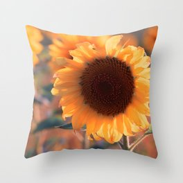 Soon she donates seeds for the birds the sunflower Throw Pillow
