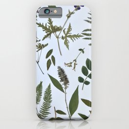 Herbarium - Pressed Flowers Art Print iPhone Case