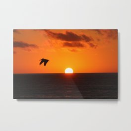 Soar Pelican Sunset Metal Print