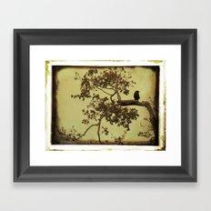 Old Crow Framed Art Print