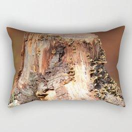Devil's Tower in Nature Rectangular Pillow