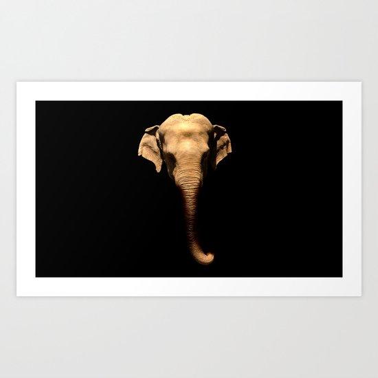 Elephant Trunk Art Print