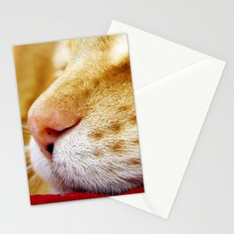 No Day Is So Bad It Can't Be Fixed With A Nap. Stationery Cards