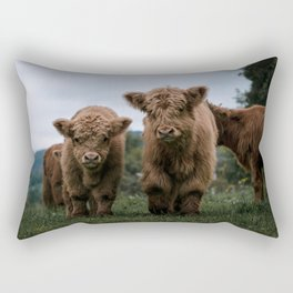 Scottish Highland Cattle Calves - Babies playing II Rectangular Pillow