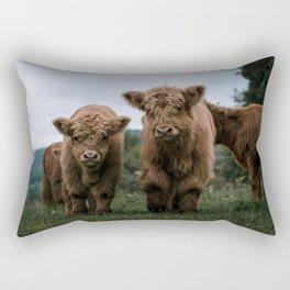 Scottish Highland Cattle Calves - Babies playing II Rectangular Pillow