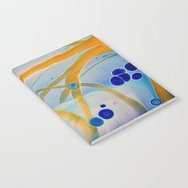 Streamer II Notebook