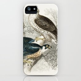 Gyr Falcon, Goshawk, Kite or Glead, Peregrine Falcon, and Kestril (Female) from A history of the ear iPhone Case