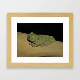 Tree Frog 2 Framed Art Print