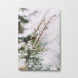 First Snowfall, I Metal Print