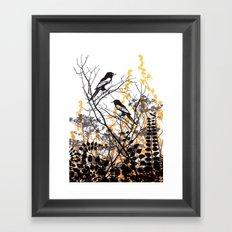 Magpies Framed Art Print