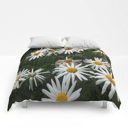 DAISY DAISY DAISY Comforters