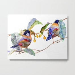 Silver-Eared Mesia Birds Metal Print
