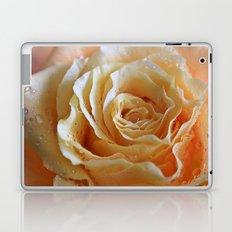 Honey Peach Rose Laptop & iPad Skin