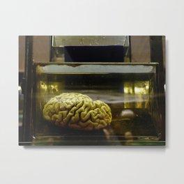 Brain in formalin Metal Print