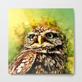 owl portrait 5 wsstd Metal Print